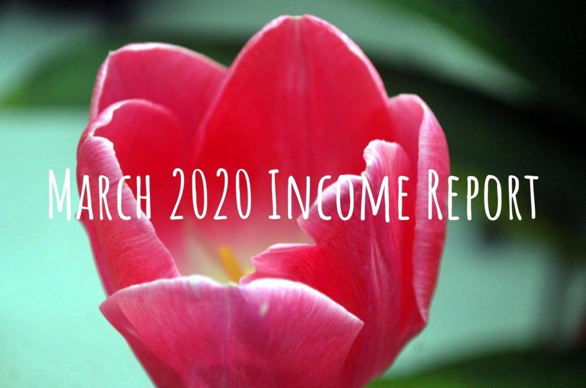 March 2020 income report from side hustle